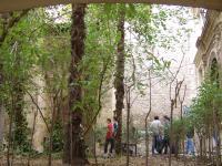 Jardines de la Entrada
